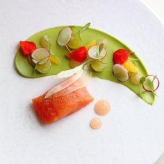 raw salmon, avocado puree and some fancy stuff