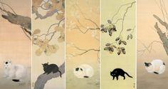 hishida cats 1