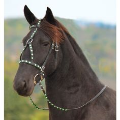 blackbase MEDIEVAL BAROQUE WAR or PARADE BRIDLE made from BETA BIOTHANE (with RHINESTONES, JEWELS, BLING)