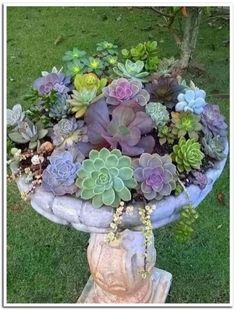 15 Most Beautiful Container Gardening Flowers Ideas For Your Home Front Porch # - Modern Succulent Landscaping, Front Yard Landscaping, Succulents Garden, Landscaping Ideas, Flower Gardening, Diy Jardim, Front Porch Garden, Front Porches, Vegetable Garden Planner