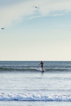The best place for women to learn to surf!