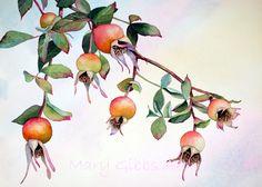 Blätter | Mary Gibbs Kunst