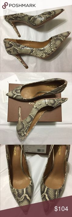 "💝 Coach Pumps NWB Coach ""Teddie"" Soft Printed Snakeskin Pumps! Snake-printed leather with leather leather linings and soles 3 1/2"" covered heel. Tried on but never worn! Natural-ivory/grey toned. Coach Shoes Heels"