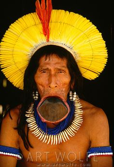Portrait of Elder Kayapo, Para State, Brazil..... This is the same culture of the people of Kenya Ethopia Ghana and other African countries. Proof that Africa did populate the world.