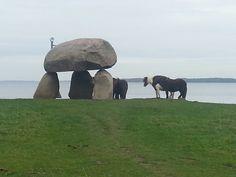 Ponies in Knuthenborg Park,  Denmark