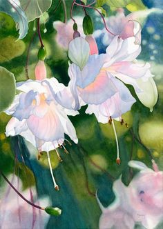 Marney Ward watercolor http://marneyward.com/