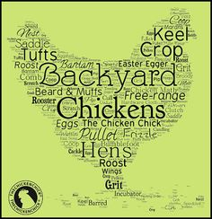 Illustrated Glossary of Essential Chicken Terms