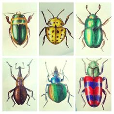 #Fundchaser #art #goal #crowdfunding #bugs
