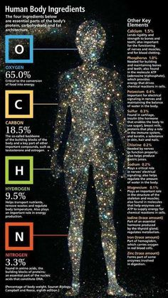Chemical breakdown of the human body. We are made of what the universe gives. Our entire composition comes from the cosmic dust of exploding stars. You are literally the stuff of stars. Cosmos, Life Science, Science And Nature, Science Facts, Biology Facts, Star Science, Earth Science, Biology Lessons, Brain Science