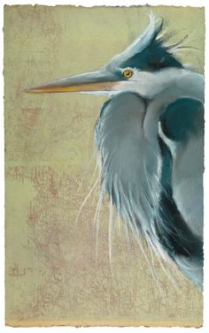 Great BLue Heron on map, pastel on monotype