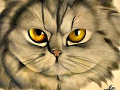Noble Kitty