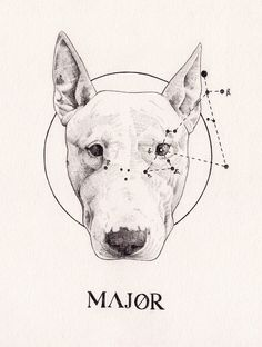 MAJOR - Peter Carrington // this is definitely one of my favorite pieces
