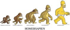The Simpsons Homer Simpson Homersapiens Cartoon Wallpaper, The Simpsons Wallpapers, Wallpaper World, Background Hd Wallpaper, Funny Wallpapers, Cartoon Cartoon, Funny Cartoon Pictures, Cartoon Characters, Cartoon Girls