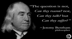Thinkers, a series of vegetarian quotes Suffering.universal to all species. Be a voice to those who have none.None None may refer to: Thinkers, a series of vegetarian quotes Suffering.universal to all species. Be a voice to those who have none. Why Vegetarian, Vegetarian Quotes, Quotes By Famous People, Quotes To Live By, Jeremy Bentham, Equality Quotes, Great Thinkers, Philosophy Quotes, Human Soul