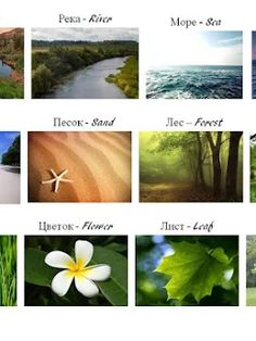 Фотографія Russian Lessons, Russian Language Learning, Plants, Learn Russian, Plant, Planets