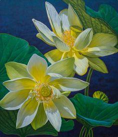 "Fiona Craig - Fine Art - White Lotuses 1, oil on canvas, 42"" x 36""."