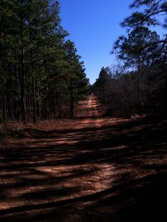 Trail run in Raeford, NC