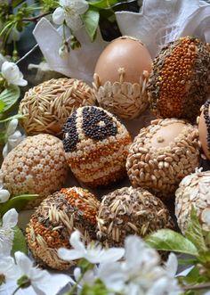 Uova decorate con pasta e semi