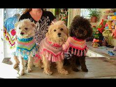 Dream Catcher, Teddy Bear, Knitting, Animals, Youtube, Nara, Crochet Dog Clothes, Dog Fashion, Crochet Poncho