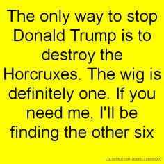 The only way to stop Donald Trump is to destroy the Horcruxes. The wig is definitely one. If you need me, I'll be finding the other six