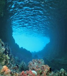 I want to go diving here. Looks so peaceful