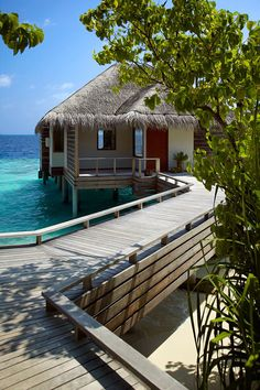Exquisite Dusit Thani Resort in Maldives | Wave Avenue