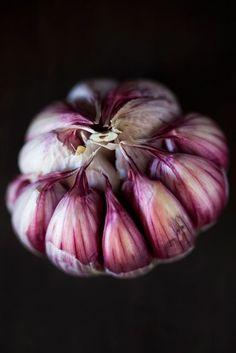 ❤️ Garlic still life. Like a flower.