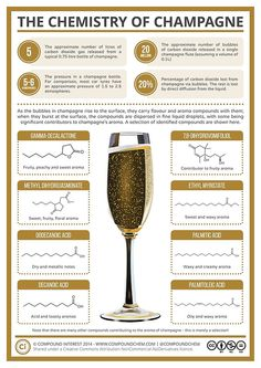 20 Million bubbles in a single champagne flute! The Chemistry of Champagne Science Chemistry, Food Science, Organic Chemistry, Chemistry Classroom, Physical Chemistry, Chemistry Teacher, Earth Science, Science Experiments, Chateauneuf Du Pape