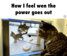 Funniest gif ever ...For more humor gifs visit www.bestfunnyjokes4u.com/