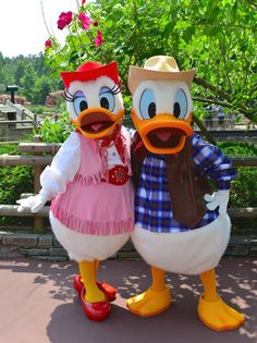 Donald Disney, Walter Elias Disney, Disney Duck, Disney Mickey, Disney Parks, Disney Pixar, Disney Couples, Walt Disney, Disney Theme