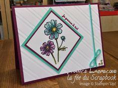 """Mariabilités / Blendabilities + Jeu d'étampes hôtesse / Hostess Stamp set """"Éclosion d'espoir / Bloom with Hope"""" + """"Du Coq à l'âne / And Many More"""" ... www.lafeeduscrapbook.com"""