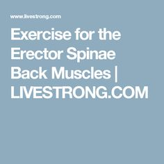 Exercise for the Erector Spinae Back Muscles | LIVESTRONG.COM