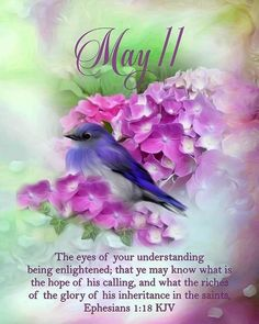 Happy Mother's Day Greetings, Good Morning Greetings, Days Of The Year, Months In A Year, Scripture Verses, Bible Scriptures, Ephesians 1, Verse Of The Day, May