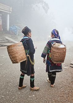 Foggy Mornings, Sapa, Vietnam