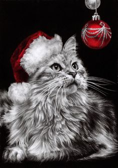 by *dreamarian on deviantART-And a meowy Christmas to you! Kittens Cutest, Cats And Kittens, Cute Cats, Christmas Kitten, Christmas Animals, Merry Christmas, Christmas Ornament, Pretty Cats, Beautiful Cats