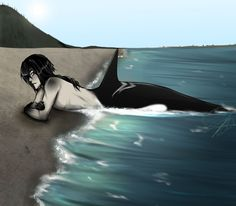 OoSKael Lifes a beach by Nisassa on DeviantArt