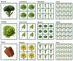 square foot gardening chart