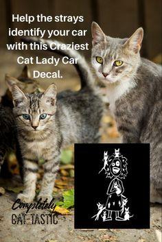 Danger Mirrored Window Decal 2x CAT LOVER EMERGENCY STICKER Crash Rescue