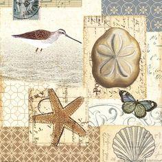 Coastal Collage III / Pela