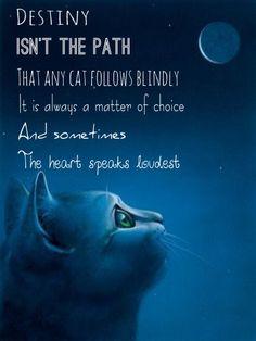 Fr : Le destin n'est pas le chemin que tout chat suit à l'aveugle, c'est toujours une question de choix et parfois le cœur parle le plus fort.
