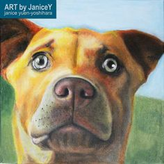 Dog painting dog art commission pet painting, Morgan, a Kelpie https://www.etsy.com/shop/ARTbyJaniceY