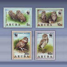 Arubaanse Uil