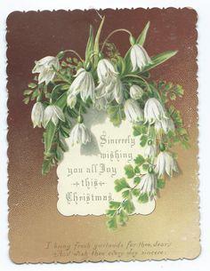 VICTORIAN CHRISTMAS CARD, SNOWDROPS & FERNS, 1880's | eBay