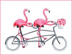flamant tandem a velo, pink flamingo on tandem bike