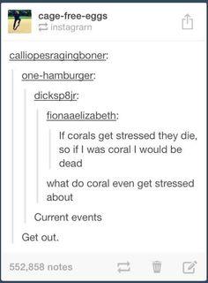 Coral LOL