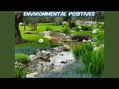 Reasons to Add Water Feature in Your Landscape
