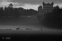 Taken in October last year at Sunrise before Wollaton Hall opens, slightly reworked with a Black and white conversion. hope you like?