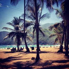 Playa Grande, Choroni Venezuela.