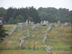 Carnac, France.  Isn't this cool? You expect to see Asterix come strolling along behind the menhirs.