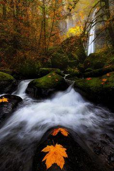 Elowah Falls, Oregon Vijay Chebium